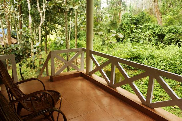 Balcony overlooking the jungle for Balcony jungle